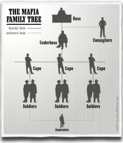 Structure Of The Mafia - The Mafia